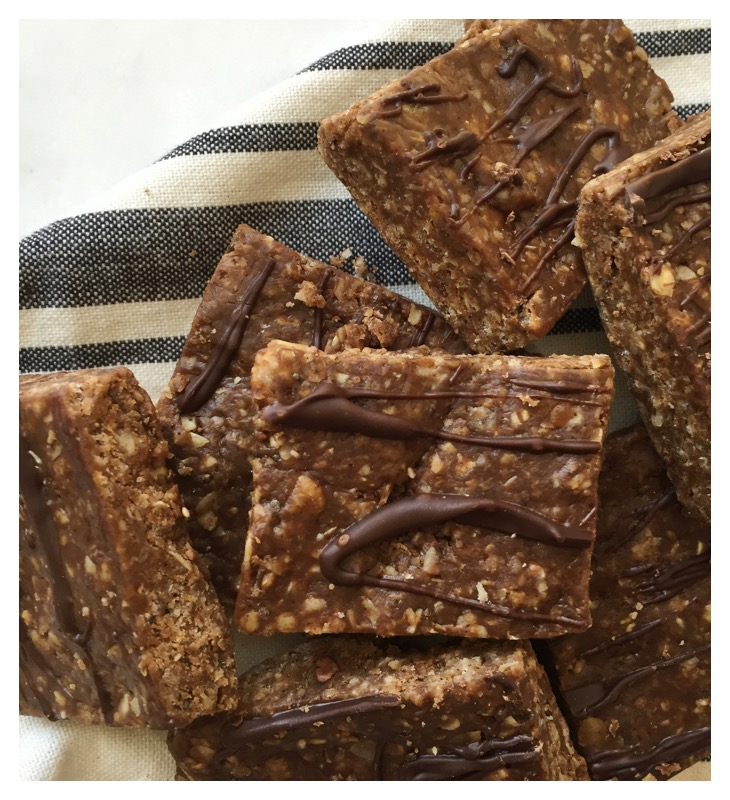 cacao protein bars
